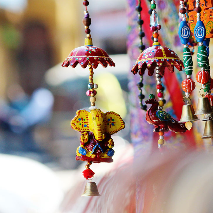Vesna Tours, India